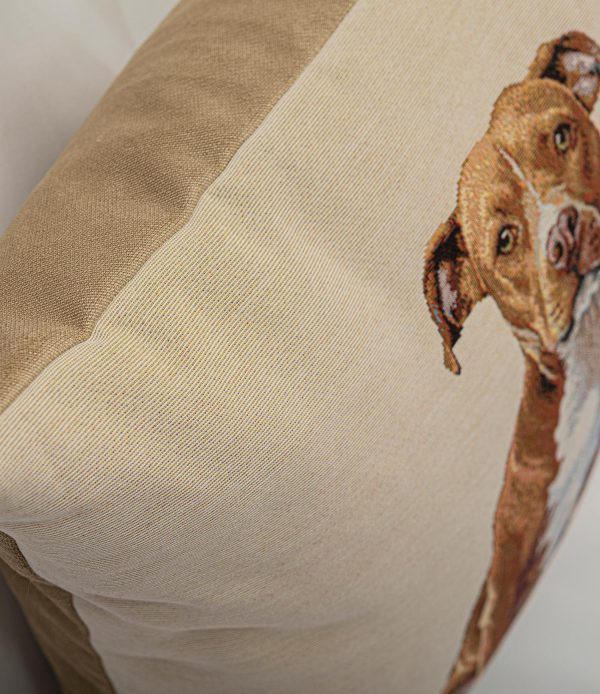 GK Furniture - Cushion, Brown Dog